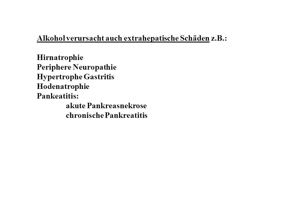 Alkohol verursacht auch extrahepatische Schäden z.B.: Hirnatrophie Periphere Neuropathie Hypertrophe Gastritis Hodenatrophie Pankeatitis: akute Pankre