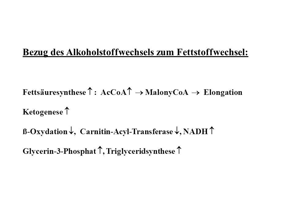 Bezug des Alkoholstoffwechsels zum Fettstoffwechsel: Fettsäuresynthese  : AcCoA   MalonyCoA  Elongation Ketogenese  ß-Oxydation , Carnitin-Acyl-