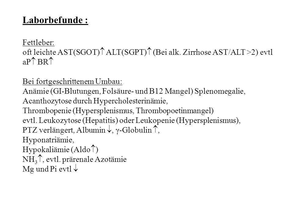 Laborbefunde : Fettleber: oft leichte AST(SGOT)  ALT(SGPT)  (Bei alk. Zirrhose AST/ALT >2) evtl aP  BR  Bei fortgeschrittenem Umbau: Anämie (GI-Bl