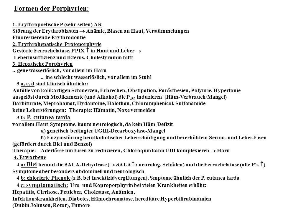 Formen der Porphyrien: 1. Erythropoetische P (sehr selten) AR Störung der Erythroblasten  Anämie, Blasen an Haut, Verstümmelungen Fluoreszierende Ery