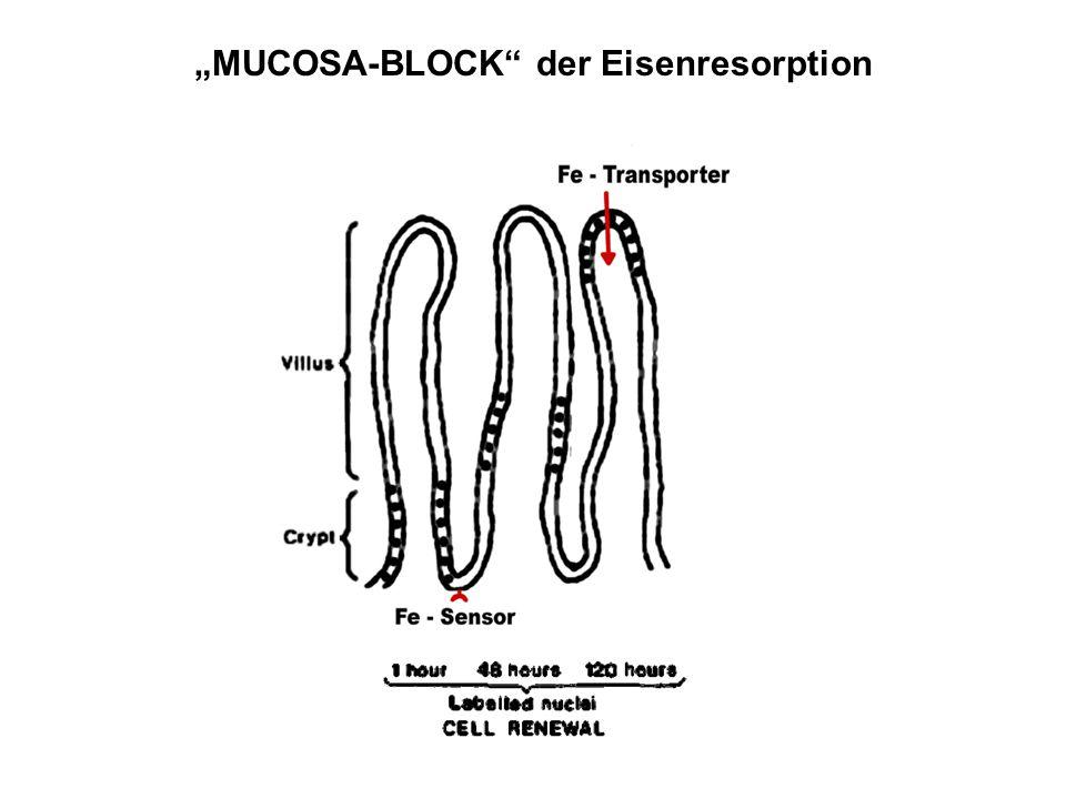 """""""MUCOSA-BLOCK"""" der Eisenresorption"""