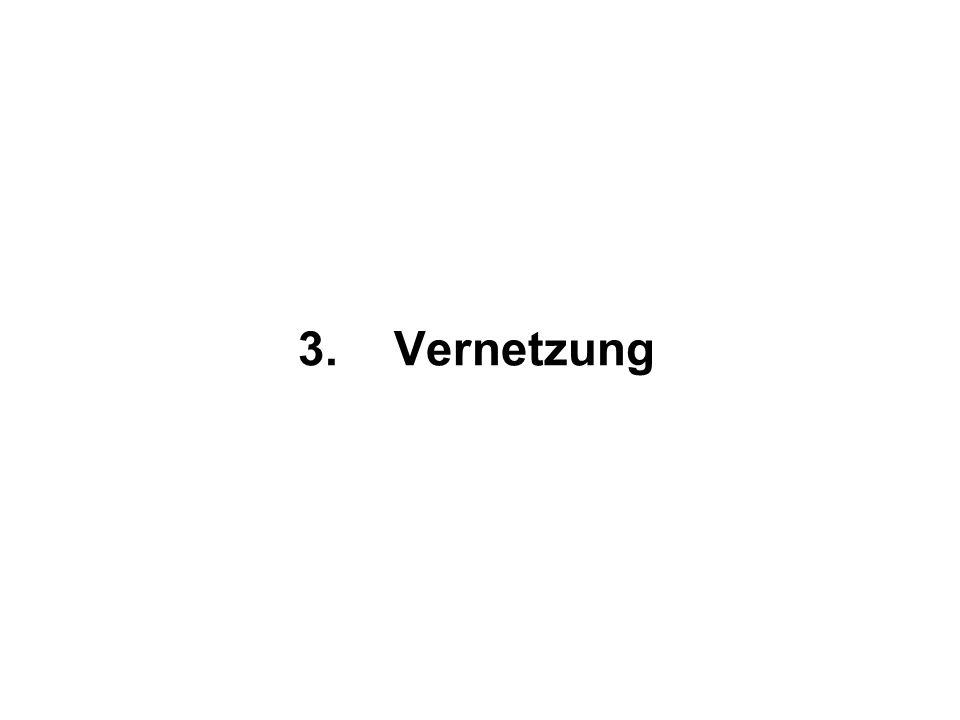3.Vernetzung