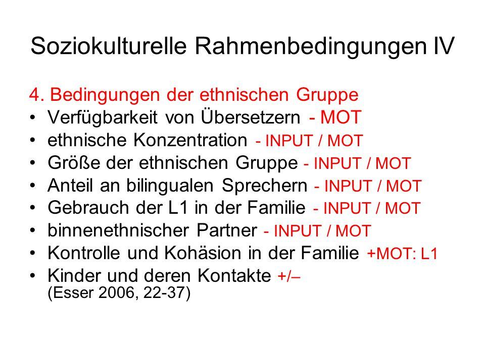 Soziokulturelle Rahmenbedingungen IV 4. Bedingungen der ethnischen Gruppe Verfügbarkeit von Übersetzern - MOT ethnische Konzentration - INPUT / MOT Gr