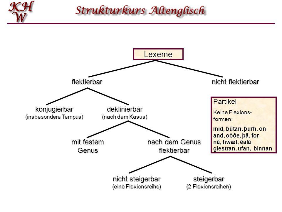 Lexeme Partikel Keine Flexions- formen: mid, būtan, þurh, on and, oððe, þā, for nā, hwæt, ēalā giestran, ufan, binnan flektierbar nicht flektierbar konjugierbar (insbesondere Tempus) deklinierbar (nach dem Kasus) mit festem Genus nach dem Genus flektierbar nicht steigerbar (eine Flexionsreihe) steigerbar (2 Flexionsreihen)