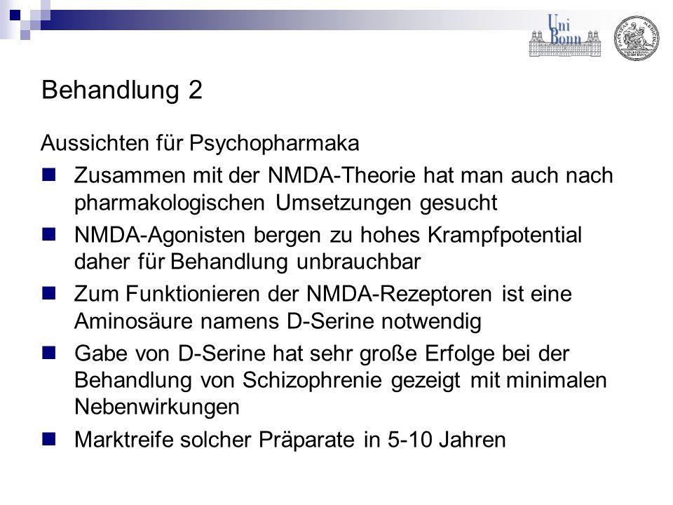 Behandlung 2 Aussichten für Psychopharmaka Zusammen mit der NMDA-Theorie hat man auch nach pharmakologischen Umsetzungen gesucht NMDA-Agonisten bergen
