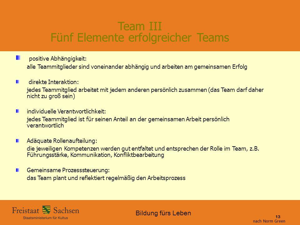 Bildung fürs Leben 01.06.2015 SMK – Bildung fürs Leben 13 Team III Fünf Elemente erfolgreicher Teams positive Abhängigkeit: alle Teammitglieder sind v