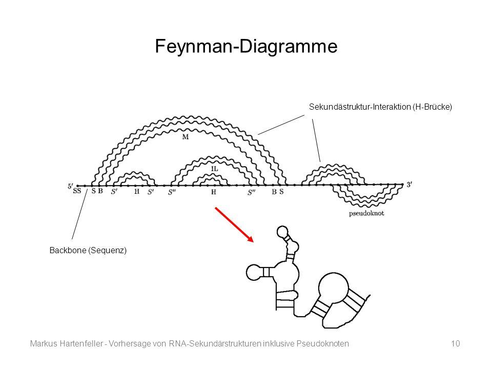 Markus Hartenfeller - Vorhersage von RNA-Sekundärstrukturen inklusive Pseudoknoten10 Feynman-Diagramme Sekundästruktur-Interaktion (H-Brücke) Backbone