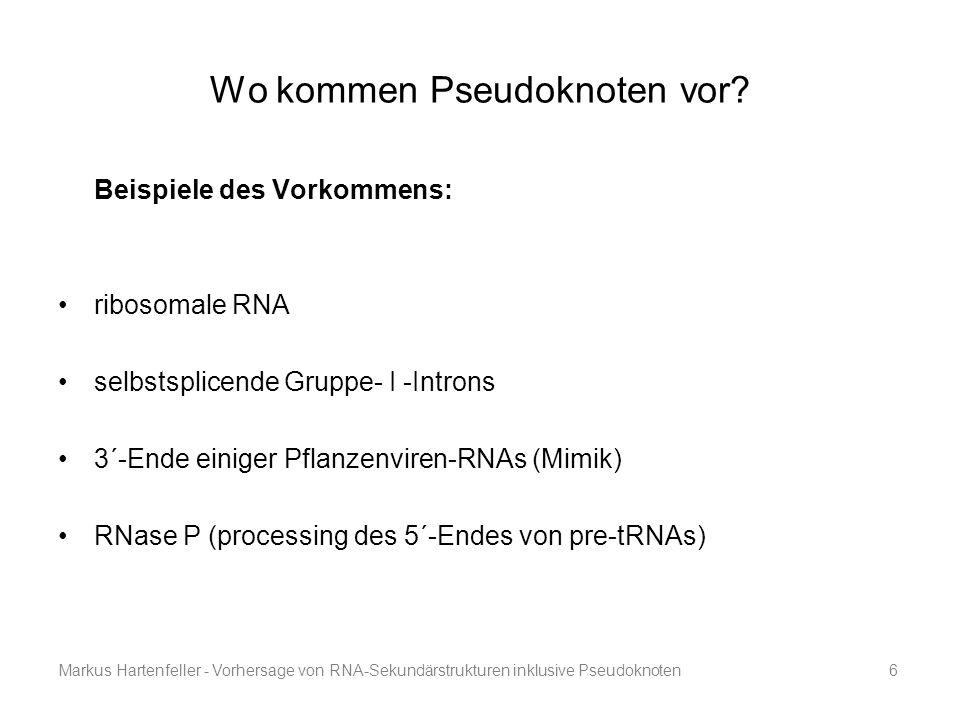 Markus Hartenfeller - Vorhersage von RNA-Sekundärstrukturen inklusive Pseudoknoten6 Wo kommen Pseudoknoten vor? Beispiele des Vorkommens: ribosomale R