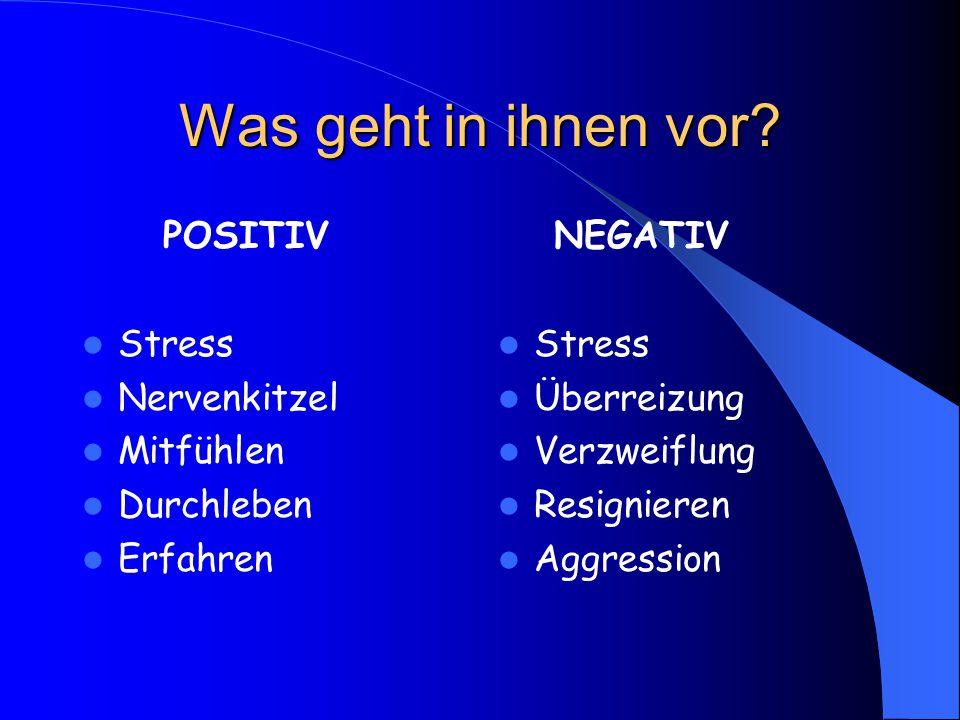 Was geht in ihnen vor? POSITIV Stress Nervenkitzel Mitfühlen Durchleben Erfahren NEGATIV Stress Überreizung Verzweiflung Resignieren Aggression