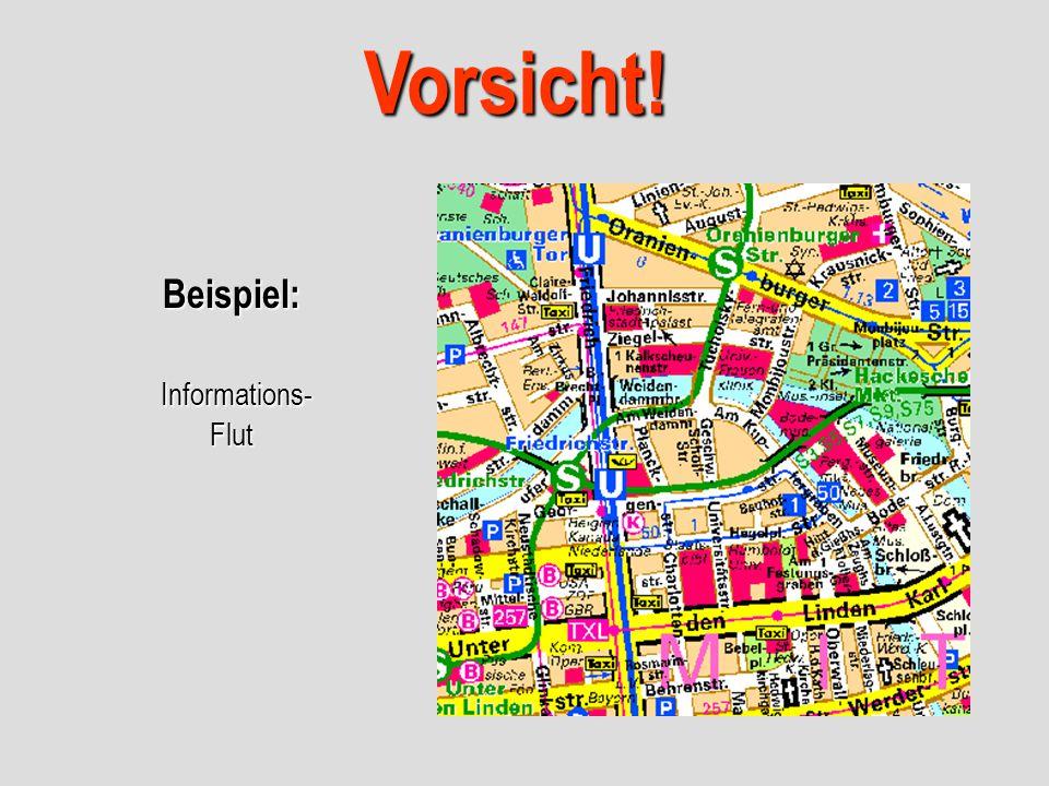 Beispiel: Informations- Flut Vorsicht!