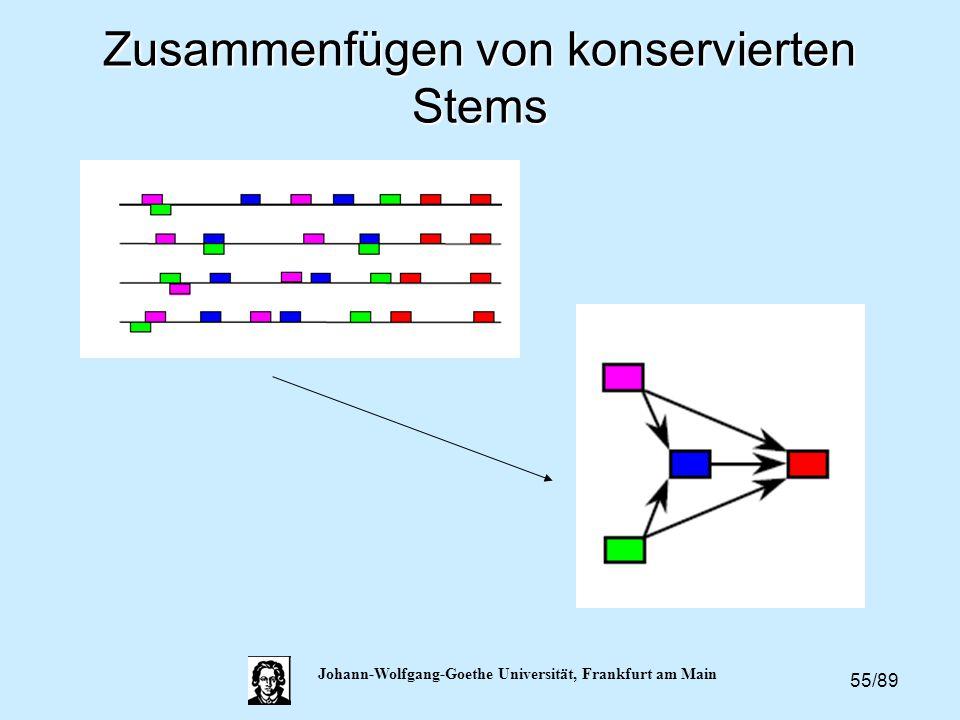 55/89 Johann-Wolfgang-Goethe Universität, Frankfurt am Main Zusammenfügen von konservierten Stems