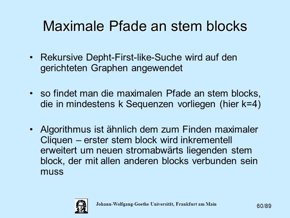 60/89 Johann-Wolfgang-Goethe Universität, Frankfurt am Main Maximale Pfade an stem blocks Rekursive Depht-First-like-Suche wird auf den gerichteten Gr