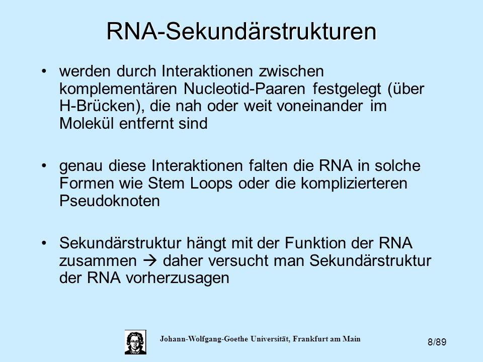 8/89 Johann-Wolfgang-Goethe Universität, Frankfurt am MainRNA-Sekundärstrukturen werden durch Interaktionen zwischen komplementären Nucleotid-Paaren f