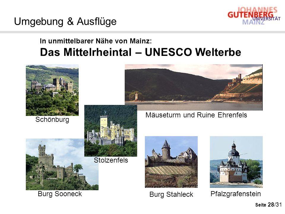 Seite 28/31 Umgebung & Ausflüge In unmittelbarer Nähe von Mainz: Das Mittelrheintal – UNESCO Welterbe Mäuseturm und Ruine Ehrenfels Burg Stahleck Burg
