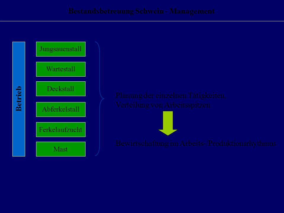 Bestandsbetreuung Schwein - Management Deckstall Wartestall Abferkelstall Mast Ferkelaufzucht Jungsauenstall Betrieb Bewirtschaftung im Arbeits-/Produktionsrhythmus Planung der einzelnen Tätigkeiten, Verteilung von Arbeitsspitzen