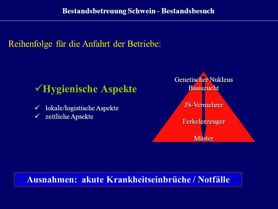 Bestandsbetreuung Schwein - Bestandsbesuch Genetischer Nukleus BasiszuchtJS-VermehrerFerkelerzeugerMäster Reihenfolge für die Anfahrt der Betriebe: Hy
