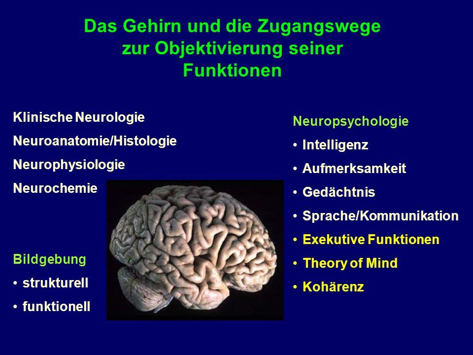 Klinische Neurologie Neuroanatomie/Histologie Neurophysiologie Neurochemie Bildgebung strukturell funktionell Das Gehirn und die Zugangswege zur Objek