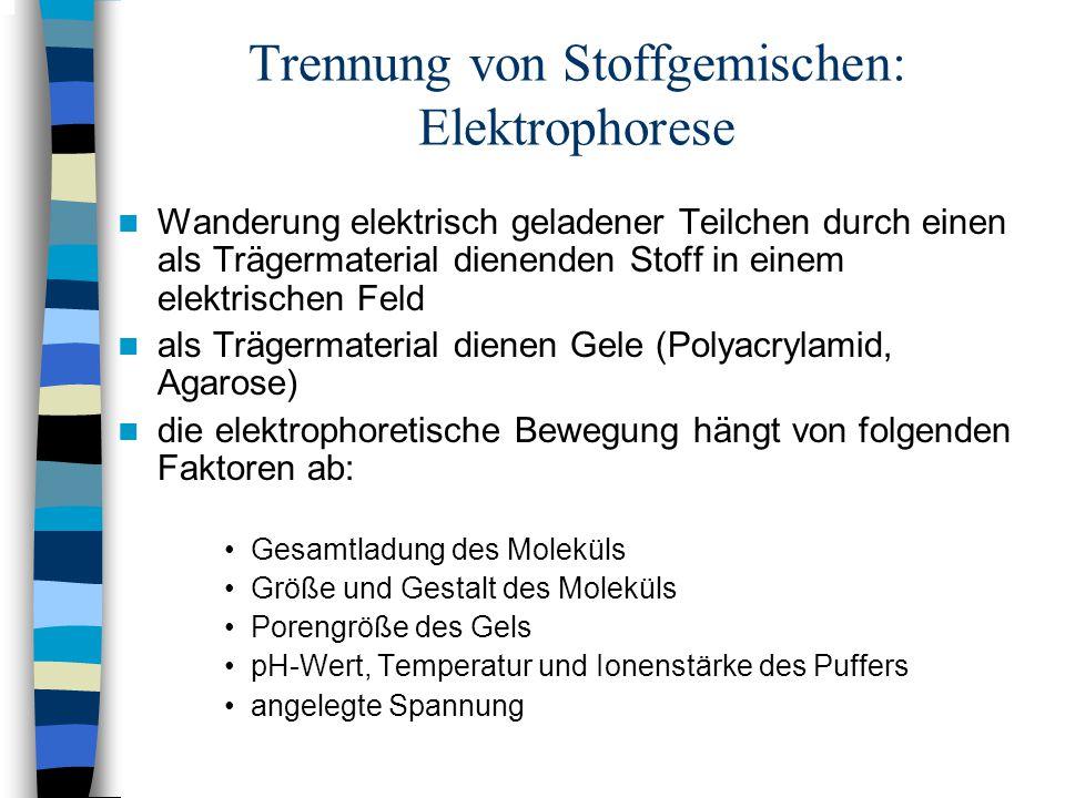 Trennung von Stoffgemischen: Elektrophorese Wanderung elektrisch geladener Teilchen durch einen als Trägermaterial dienenden Stoff in einem elektrisch