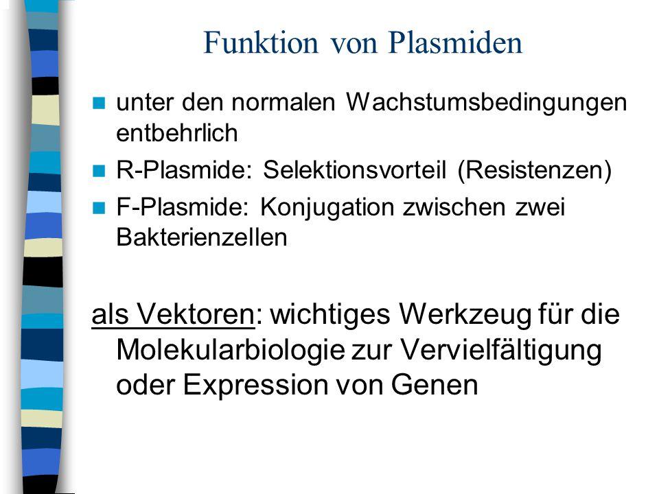 Funktion von Plasmiden unter den normalen Wachstumsbedingungen entbehrlich R-Plasmide: Selektionsvorteil (Resistenzen) F-Plasmide: Konjugation zwische