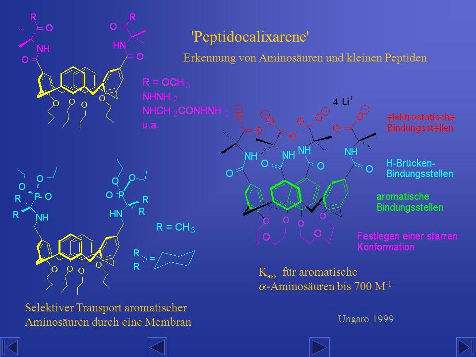 'Peptidocalixarene' Erkennung von Aminosäuren und kleinen Peptiden K ass für aromatische  -Aminosäuren bis 700 M -1 Selektiver Transport aromatischer