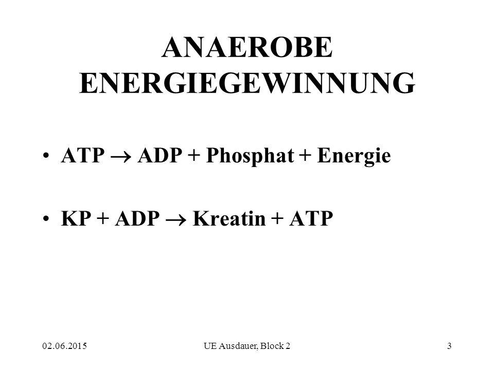 02.06.2015UE Ausdauer, Block 23 ANAEROBE ENERGIEGEWINNUNG ATP  ADP + Phosphat + Energie KP + ADP  Kreatin + ATP