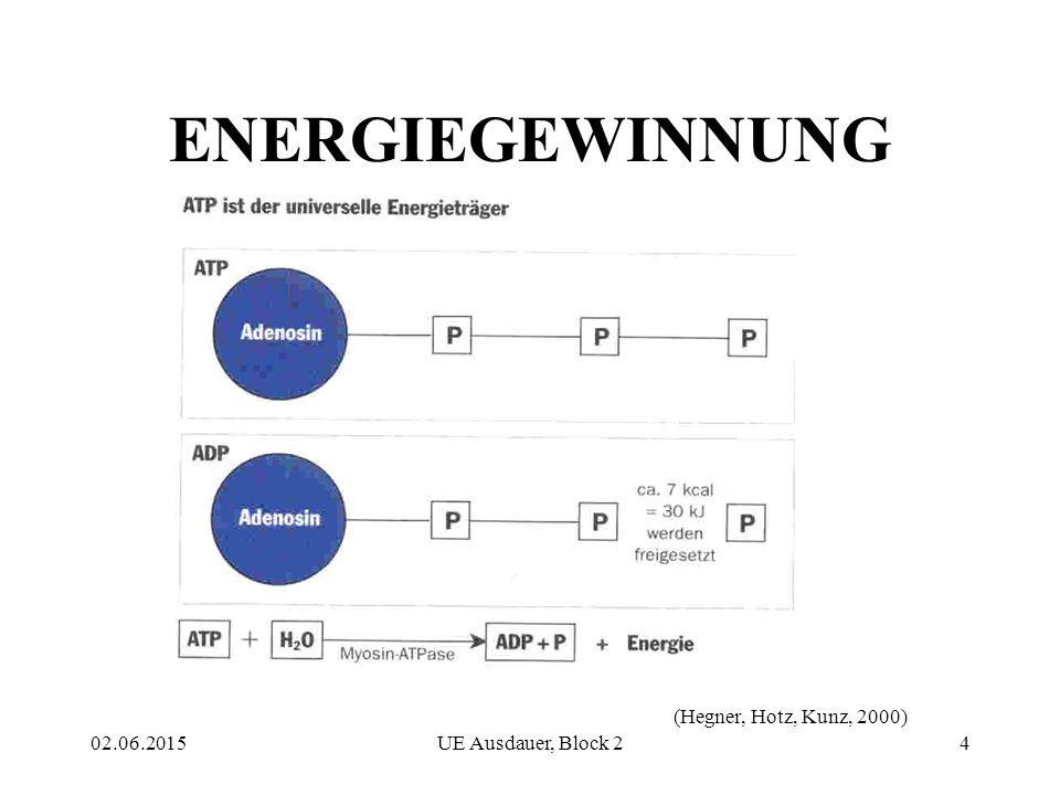 02.06.2015UE Ausdauer, Block 24 ENERGIEGEWINNUNG (Hegner, Hotz, Kunz, 2000)