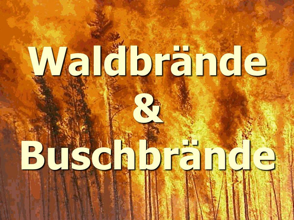 Waldbrände & Buschbrände