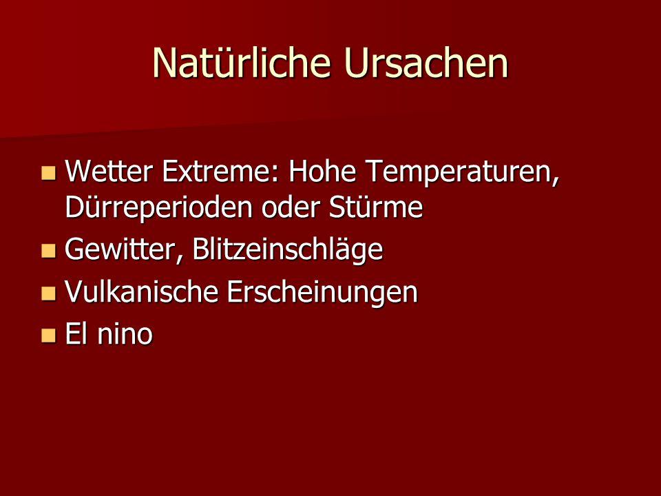 Natürliche Ursachen Wetter Extreme: Hohe Temperaturen, Dürreperioden oder Stürme Wetter Extreme: Hohe Temperaturen, Dürreperioden oder Stürme Gewitter