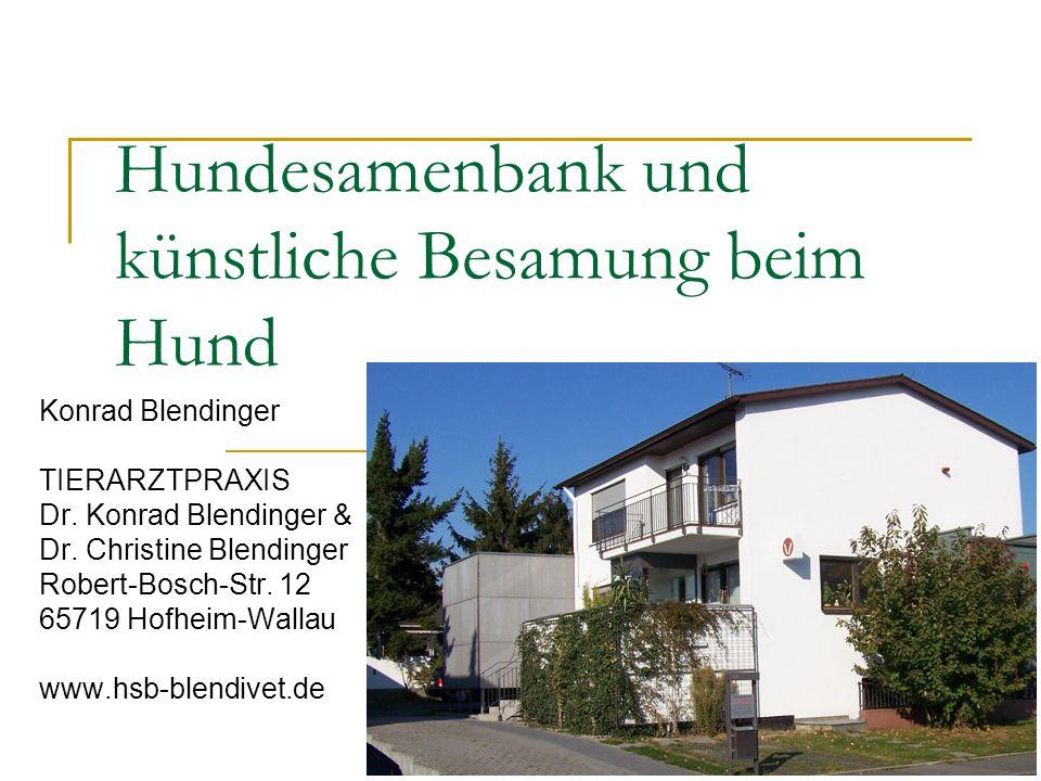 Hundesamenbank und künstliche Besamung beim Hund Konrad Blendinger TIERARZTPRAXIS Dr.