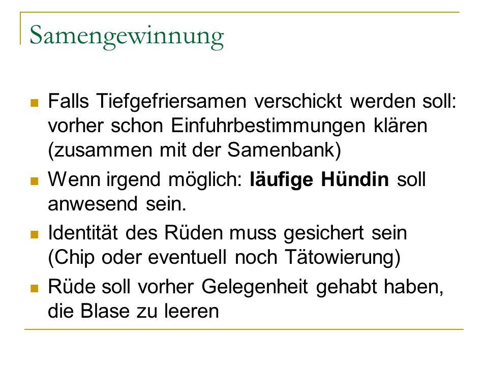 Samengewinnung Falls Tiefgefriersamen verschickt werden soll: vorher schon Einfuhrbestimmungen klären (zusammen mit der Samenbank) Wenn irgend möglich: läufige Hündin soll anwesend sein.