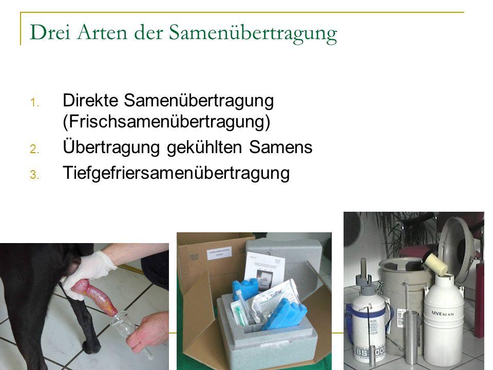 Drei Arten der Samenübertragung 1. Direkte Samenübertragung (Frischsamenübertragung) 2. Übertragung gekühlten Samens 3. Tiefgefriersamenübertragung