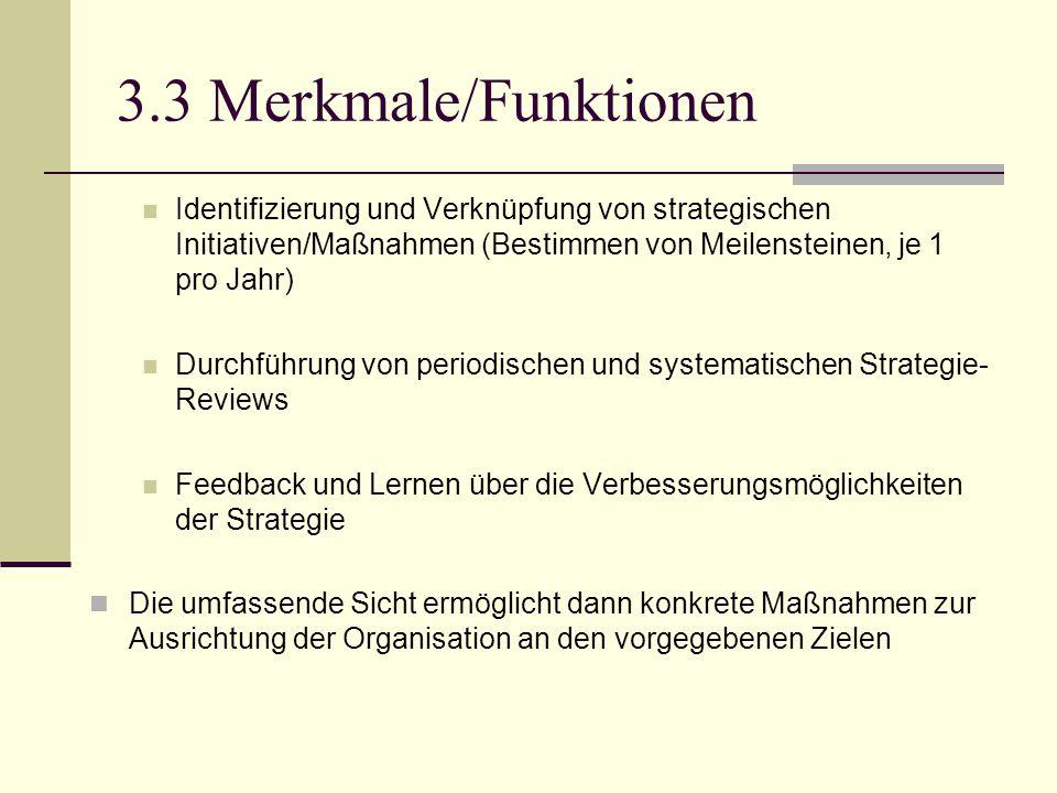 3.3 Merkmale/Funktionen Identifizierung und Verknüpfung von strategischen Initiativen/Maßnahmen (Bestimmen von Meilensteinen, je 1 pro Jahr) Durchführ