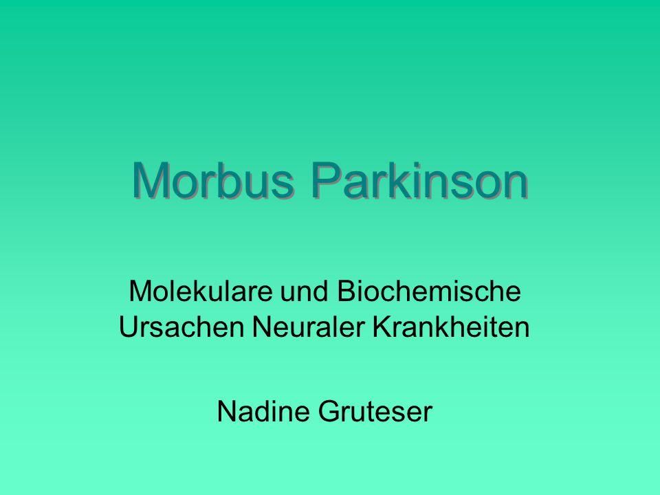 Morbus Parkinson Molekulare und Biochemische Ursachen Neuraler Krankheiten Nadine Gruteser