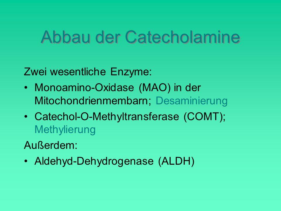 Abbau der Catecholamine Zwei wesentliche Enzyme: Monoamino-Oxidase (MAO) in der Mitochondrienmembarn; Desaminierung Catechol-O-Methyltransferase (COMT); Methylierung Außerdem: Aldehyd-Dehydrogenase (ALDH)