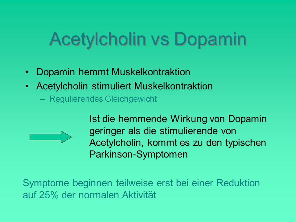 Acetylcholin vs Dopamin Dopamin hemmt Muskelkontraktion Acetylcholin stimuliert Muskelkontraktion –Regulierendes Gleichgewicht Ist die hemmende Wirkung von Dopamin geringer als die stimulierende von Acetylcholin, kommt es zu den typischen Parkinson-Symptomen Symptome beginnen teilweise erst bei einer Reduktion auf 25% der normalen Aktivität