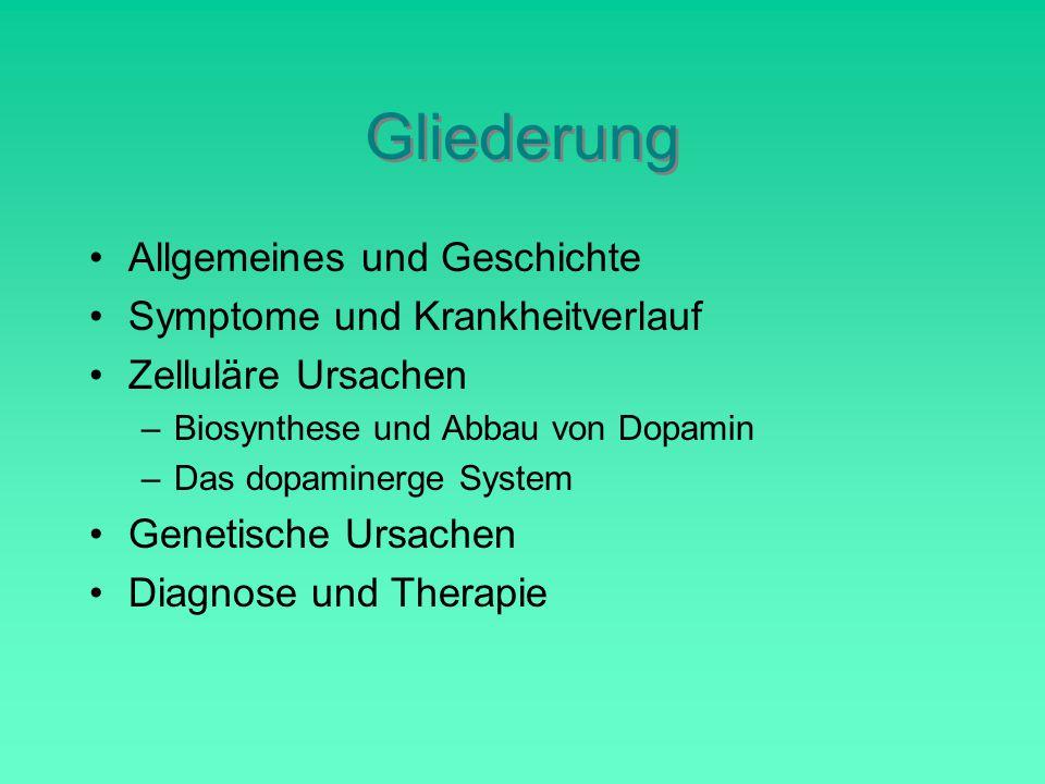 Gliederung Allgemeines und Geschichte Symptome und Krankheitverlauf Zelluläre Ursachen –Biosynthese und Abbau von Dopamin –Das dopaminerge System Genetische Ursachen Diagnose und Therapie
