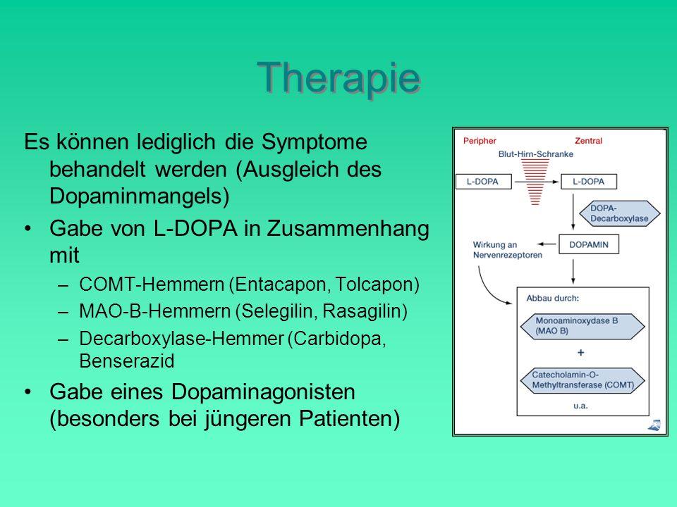 Therapie Es können lediglich die Symptome behandelt werden (Ausgleich des Dopaminmangels) Gabe von L-DOPA in Zusammenhang mit –COMT-Hemmern (Entacapon, Tolcapon) –MAO-B-Hemmern (Selegilin, Rasagilin) –Decarboxylase-Hemmer (Carbidopa, Benserazid Gabe eines Dopaminagonisten (besonders bei jüngeren Patienten)
