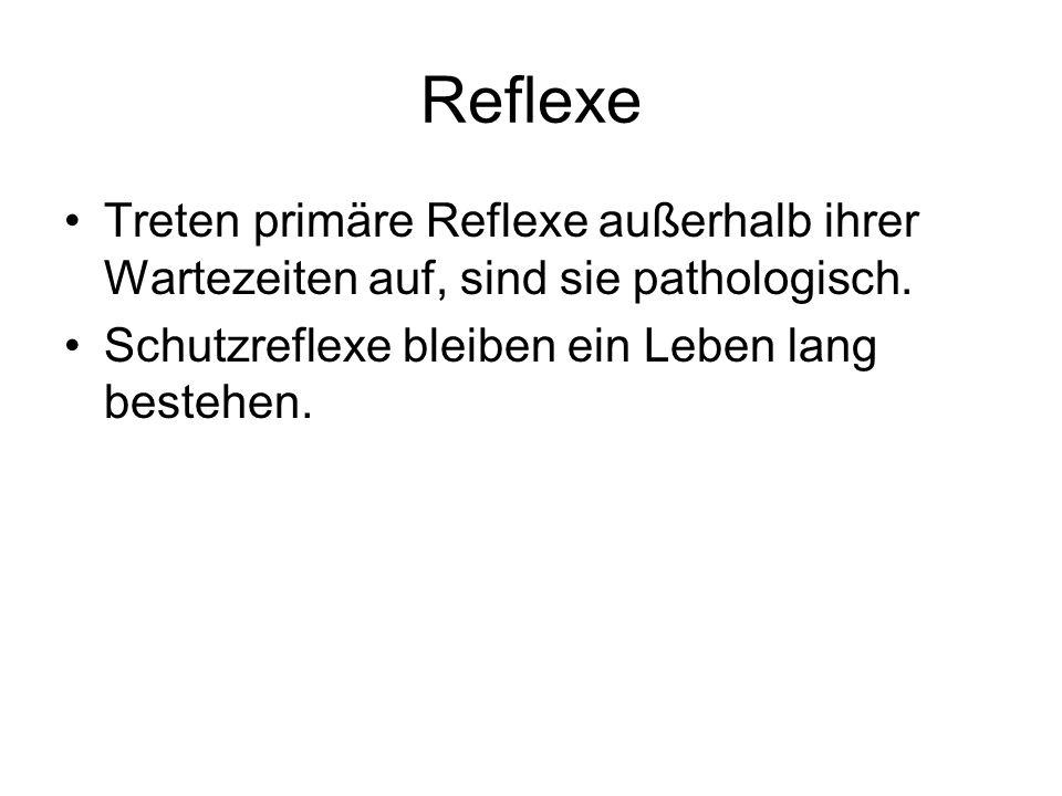 Reflexe Treten primäre Reflexe außerhalb ihrer Wartezeiten auf, sind sie pathologisch. Schutzreflexe bleiben ein Leben lang bestehen.