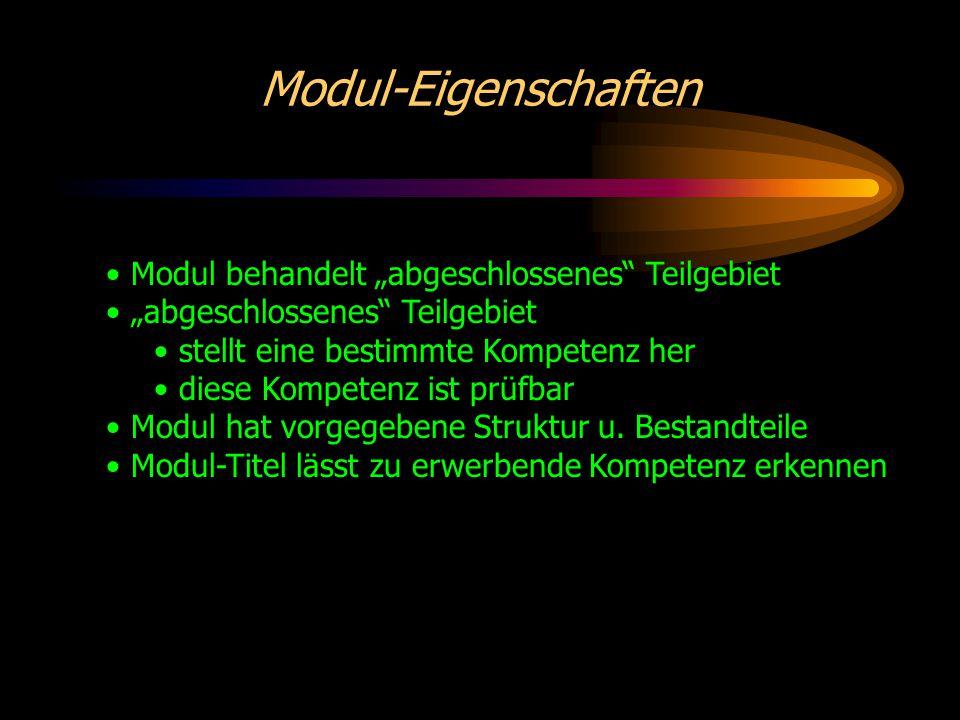Modularisierung Standardisierung der Module bezüglich Umfang (Was ist ein Modul??) Aufbau Didaktik Lernerfolgskontrollen formaler Darstellung Ziel: Module frei kombinieren können