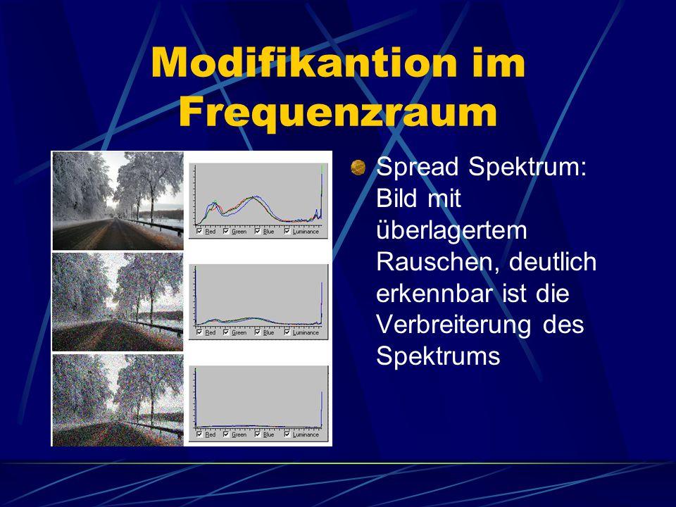 Modifikantion im Frequenzraum Spread Spektrum: Bild mit überlagertem Rauschen, deutlich erkennbar ist die Verbreiterung des Spektrums