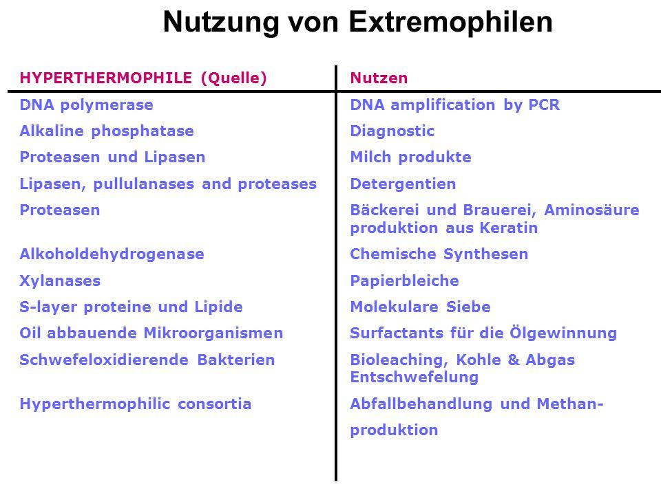 Extremophile:: Hyperthermophile (- 105°C) Psychrophile (-7 – 15 o C) Halophile (- Sättigung) Acidophile (- pH 0,5) Alkaliphile (- pH 11) Baro- oder Pi