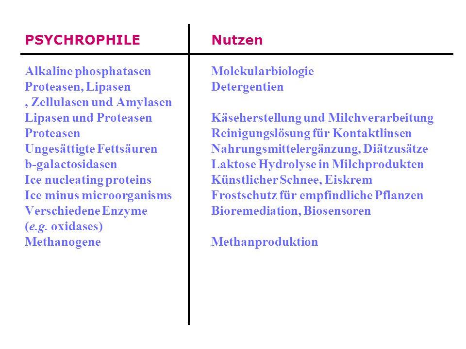 Nutzung von Extremophilen HYPERTHERMOPHILE (Quelle)Nutzen DNA polymerase DNA amplification by PCR Alkaline phosphatase Diagnostic Proteasen und Lipase