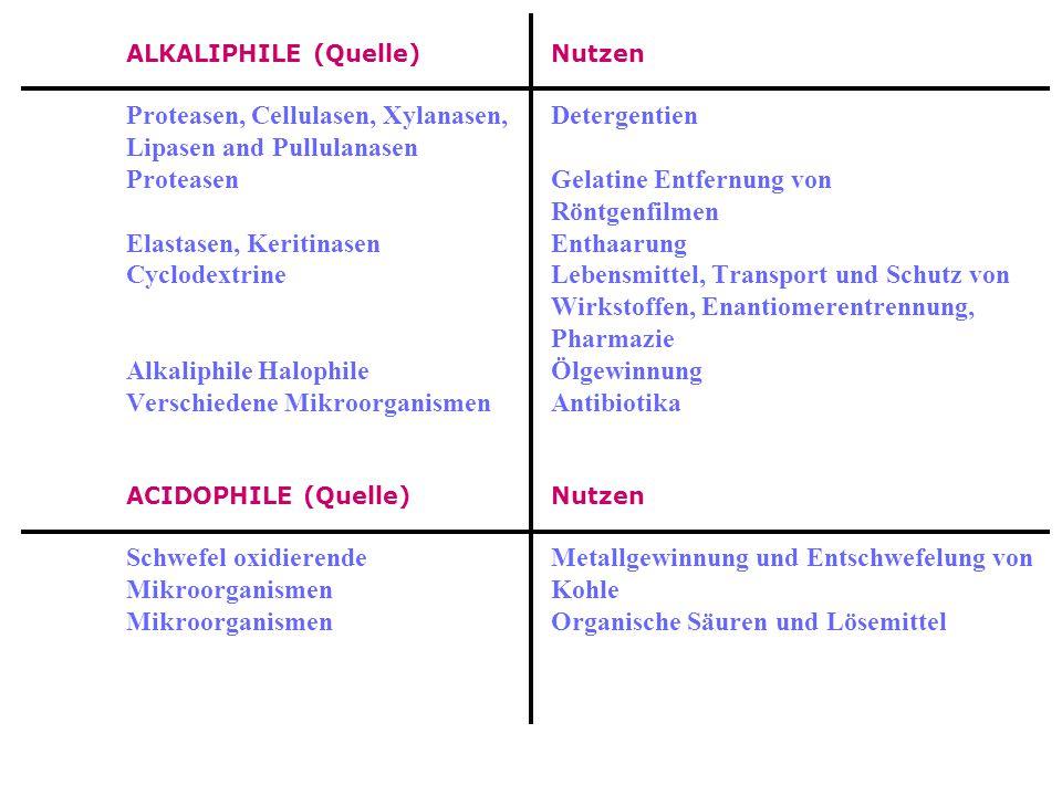 PSYCHROPHILE Nutzen Alkaline phosphatasenMolekularbiologie Proteasen, LipasenDetergentien, Zellulasen und Amylasen Lipasen und ProteasenKäseherstellun