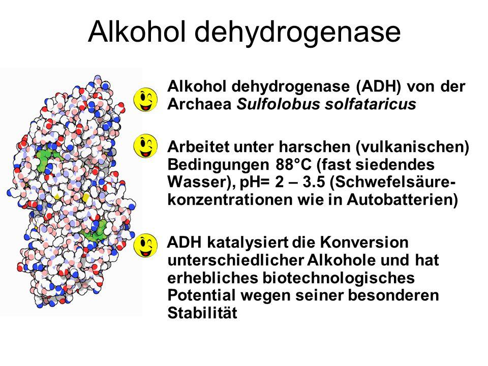 ALKALIPHILE (Quelle)Nutzen Proteasen, Cellulasen, Xylanasen, Detergentien Lipasen and Pullulanasen ProteasenGelatine Entfernung von Röntgenfilmen Elas