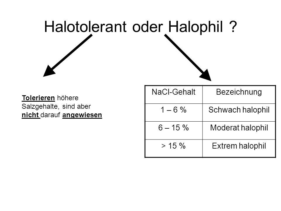 Extrem durch niedrige Wasseraktivitäten WasseraktivitätHabitatBewohner 1.000Reines H 2 OCaulobacter, Spirillum 0.995Menschliches BlutStreptococcus, Es