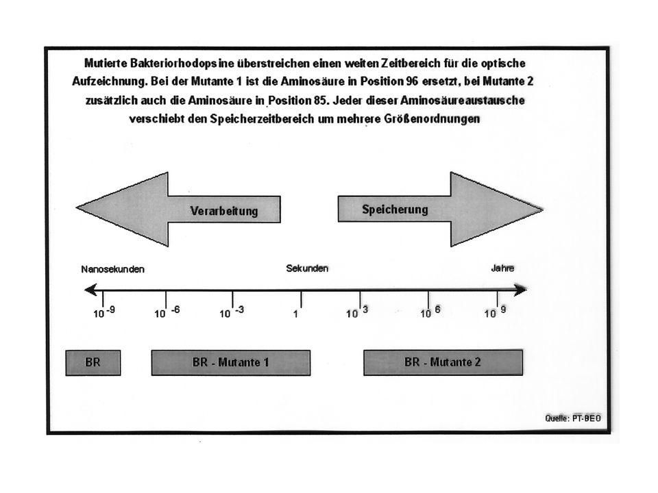 Bacteriorhodopsin Physiologische Funktion: Licht grüner Spektralbereich 570 nm - protonenmotorische Kraft Arbeitsweise: Ändert Protonisierung/Farbe in