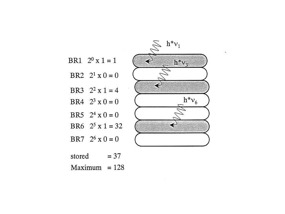 Technisches Potential von BR folgt aus Licht ->Signal zu wandeln: Ladungstrennung Farbänderung Technische Anwendungen: Elektrostatische Energie -> pho