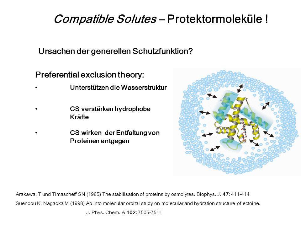 Primär osmotisches Gegengewicht aber auch generelle Schutzfunktion! Compatible Solutes – Protektormoleküle ! Schützen: Enzyme, biologische Strukturen