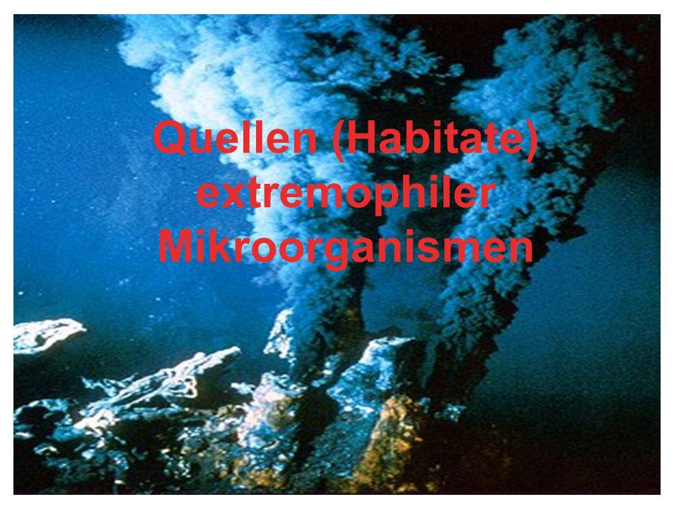 Quelle: www.mibi.uni-bonn.de/extremophile.jpg