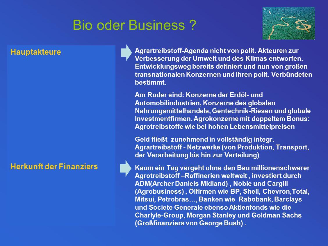 Bio oder Business .Agrartreibstoff-Agenda nicht von polit.